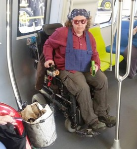 Wheelchair user & pole